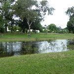 Grange Burn River