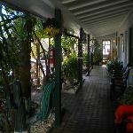 Tropical garden and corridor