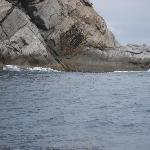 roca que se asemeja a una tortuga