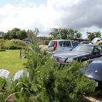 parking and garden