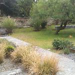 más jardin