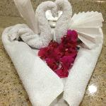 Swans made by housekeeping from clean towels
