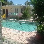 The Very Nice Pool!!!!