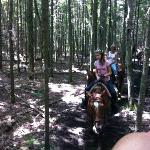 The 1 hour ride began near the Grand Hotel and continued through neighborhoods and the woods
