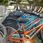 The Harbor Inn offers bikes to rent to tour the island.