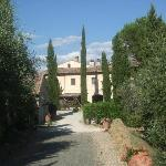 Approach to Villa Dini