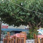 Φωτογραφία: Charoula's Tavern