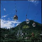 Cable Cars at Ocean Park Hong Kong (45750683)