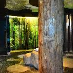 Strefa saun w Kompleksie basenowym