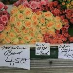 Fragrant roses at the Saturday market on KKStrasse