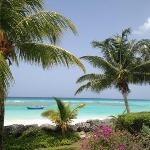 Photo of Coral Sands Beach Resort