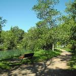 Bowness Park channel and pathway