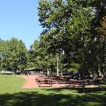 Bowness Park picnic area
