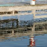 Reflection In Marina