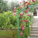 Main entrance with garden