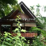 View of our cottage from the jungle side