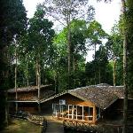 Panoramic View of Borneo Nature Lodge