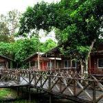 Panoramic View of Borneo Nature Lodge