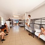 8 Bed Deluxe Dorm The Jack Backpackers Cairns