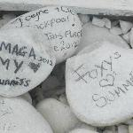 the signing of the stone s seamed a great idea , just hope they stay xx
