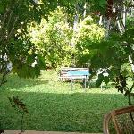 View from Verandah