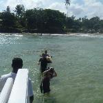 trip to island