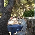 Photo of Restaurant L'Oursinado
