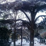 En hiver...