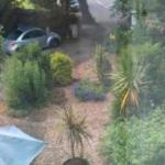 View from our bedroom of front garden