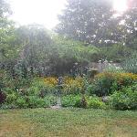 Diane's perenial gardens