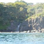 Cascade près des dauphins