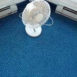 Our fan