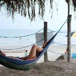 Beach - loved this hammock!!!