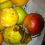frutta che dopo 24 ora marciva dall'umidita'in stanza
