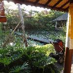 Vue de la villa lotus