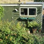 Ron's shed