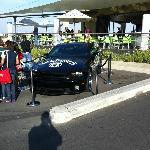 Jack Daniel's Mustang