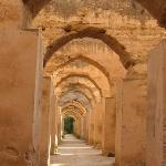 Horst stables at the Graneries of Moulay Ismail