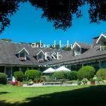 Photo de Arbre d'Lodge