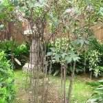 Gokuraku-jodo Garden, Shitennoji