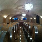 Allegrini - bois de la France - vin de L'Italy