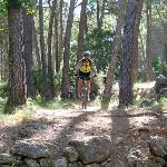 Guided mountain bike trips for individuals