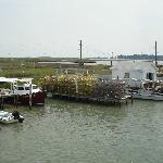 Crab Shantys