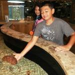 Kid holding sea cucumber