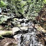 Waterfall on coffee tour