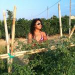 orto coltivato dell'agriturismo