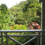 View from Coconut Cottage