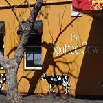 Cow on the Wall