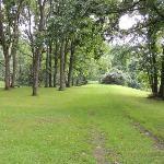 Arryl House Lawn