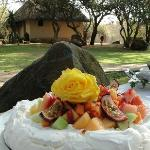 Yummy Meringue dessert served in the shaded garden
